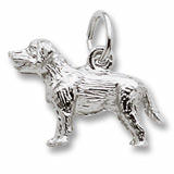 Sterling Silver Labrador charm by Rembrandt Charms